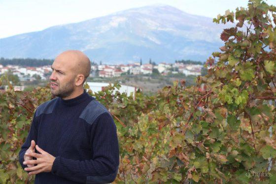 Jason Ligas - vin orange