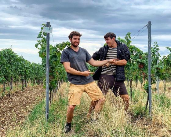 Brand bros - vin nature Allemagne